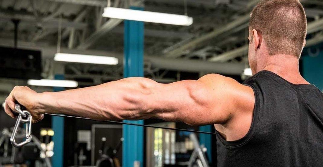 چند توصیه ویژه در مورد عضلات پشت بازو