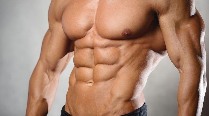 ساخت عضلات شش تکه