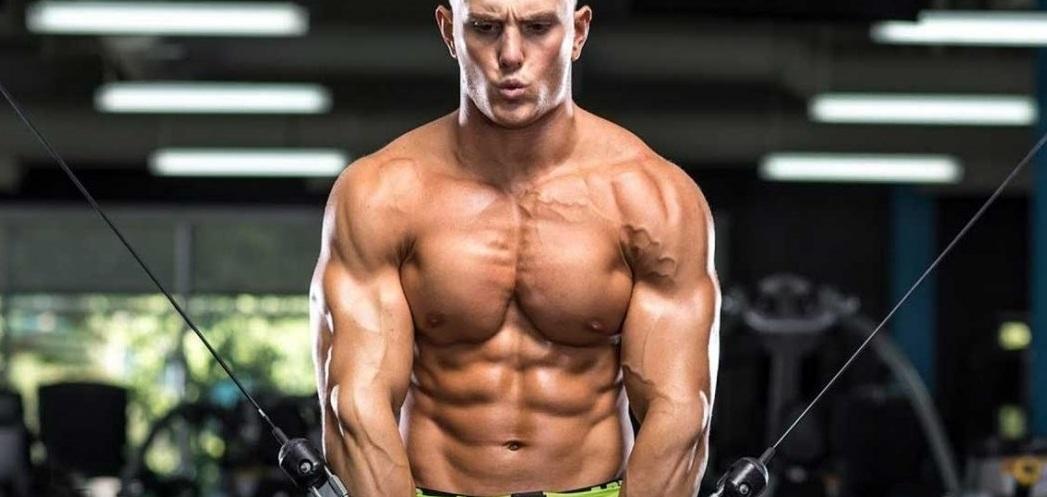 عضلات سینه المپیایی